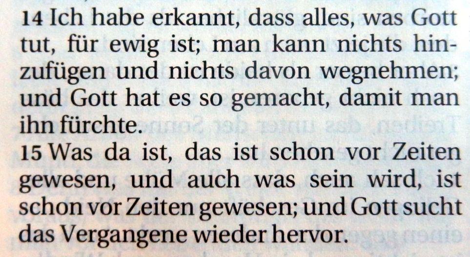 prediger3_14-15