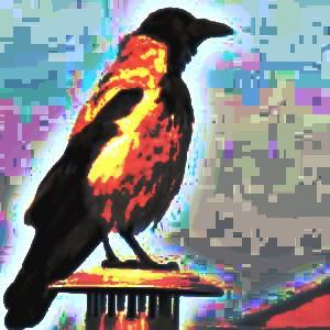 vogels-videothek