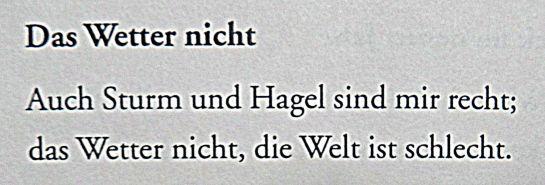 waldemar-dege-das-wetter-nicht